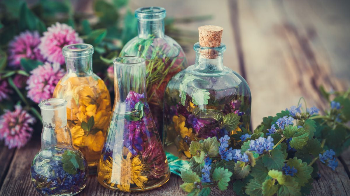 5 herbes médicinales qui font plus pour votre immunité que les médicaments