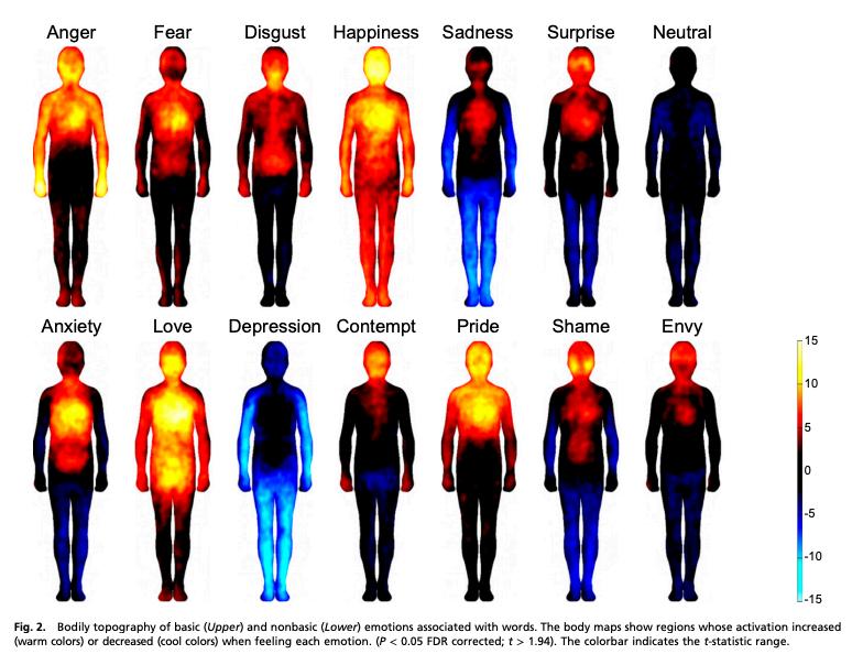 Le bonheur « réchauffe », la dépression « refroidit », l'anxiété fait « bouillir », la honte « brûle »